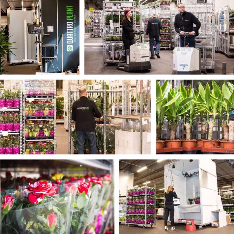 Logistics Quattro Plant